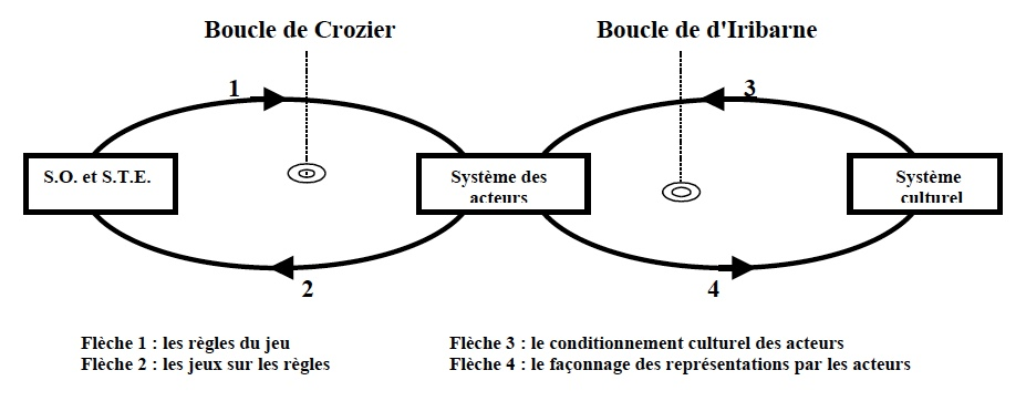 ecole systémique management